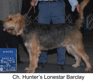 History Barclay Otterhound Dog