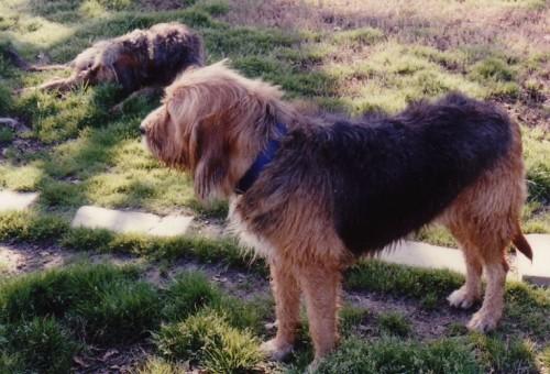 Ruthie, Rylie Summer 1994