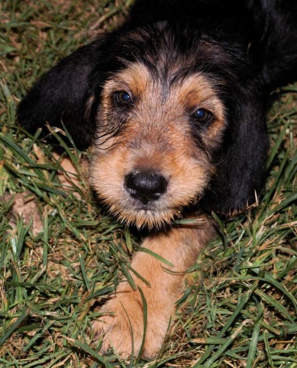Bonney Face Aug 20, 2009