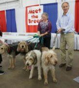March Otterhound News